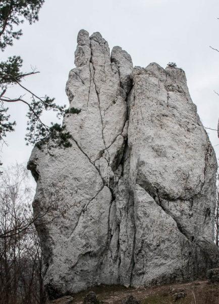 Droga Kołkówka, Dziewica, Góra Kołoczek, Podlesice (fot. Dariusz Porada)