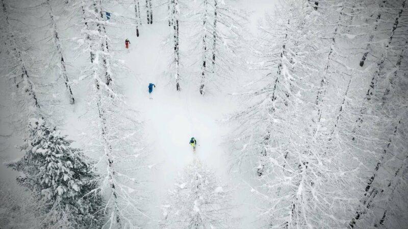 Jazda w lesie wymaga dużych umiejętności, doświadczenia oraz odpowiedniego sprzętu (fot. fritschi.com)